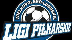 Wielkopolsko-Lubuskie Ligi Piłkarskie (logo)