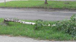 Nawałnica w Turku