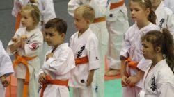 Mistrzostwa Wielkopolski w karate. Turek 2018