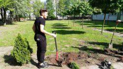 SP5 Turek. 100 drzew w stulecie odzyskania niepodległości