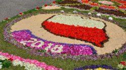 Skęczniew. Dywany kwiatowe na Boże Ciało