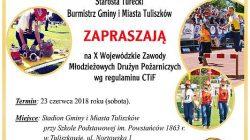 Tuliszków. Zawody MDP wg regulaminu CTiF