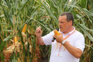 Głuchów. Dzień Kukurydzy w Dolinie Teleszyny pełen atrakcji