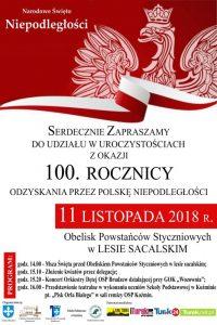 Brudzew. Uroczystość z okazji 100. rocznicy odzyskania niepodległości