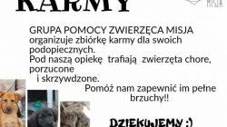 Władysławów. Zbiórka karmy w SP Natalia