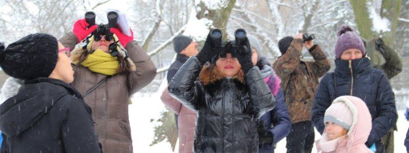 Turek. Zimowe Ptakoliczenie