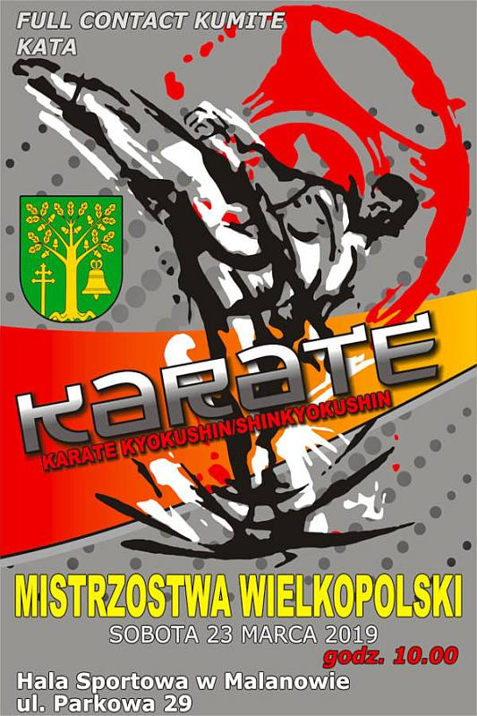 Malanów. Mistrzostwa Wielkopolski Karate