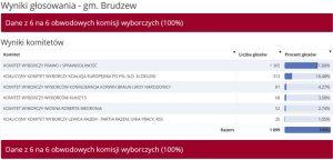 Wybory do PE 2019 -Brudzew