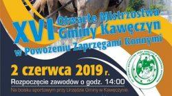 XVI Otwarte Mistrzostwa Gminy Kawęczyn w Powożeniu Zaprzęgami