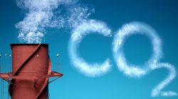 Wytwarzamy zbyt dużo CO2. Za 30 lat w Warszawie temperatura jak w Tbilisi?