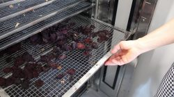 Brudzew. Otwarcie Inkubatora Kuchennego w Krwonach