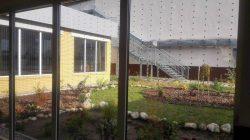 Szklane pułapki– śmiertelne zagrożenie dla ptaków