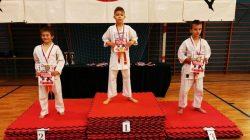 18 medali i puchar dla drużyny KSiSW