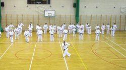 W Turku szkolili się karatecy z północno-centralnej Polski