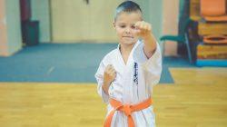 karate KSiSW Turek