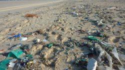 wakacje - zanieczyszczona plaża