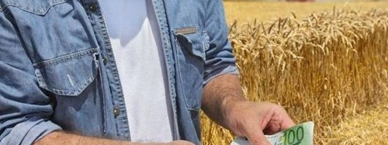 rolnik, pieniądze, euro, zboże, rekompensata