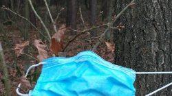 maseczka na drzewie