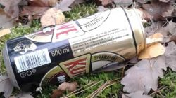 śmieci w lesie, puszka piwa